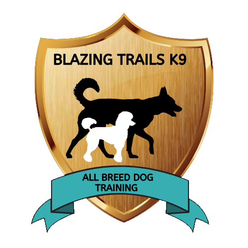 Blazing Trails K9 Academy
